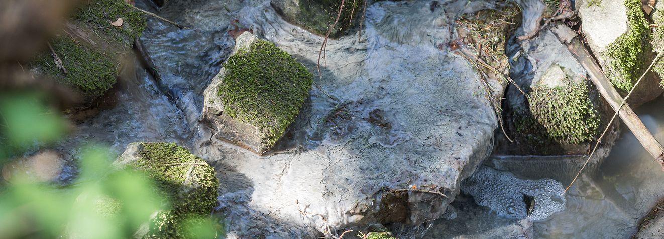 Lokales, Hedebach im Remich verschmutzt, Foto: Lex Kleren/Luxemburger Wort