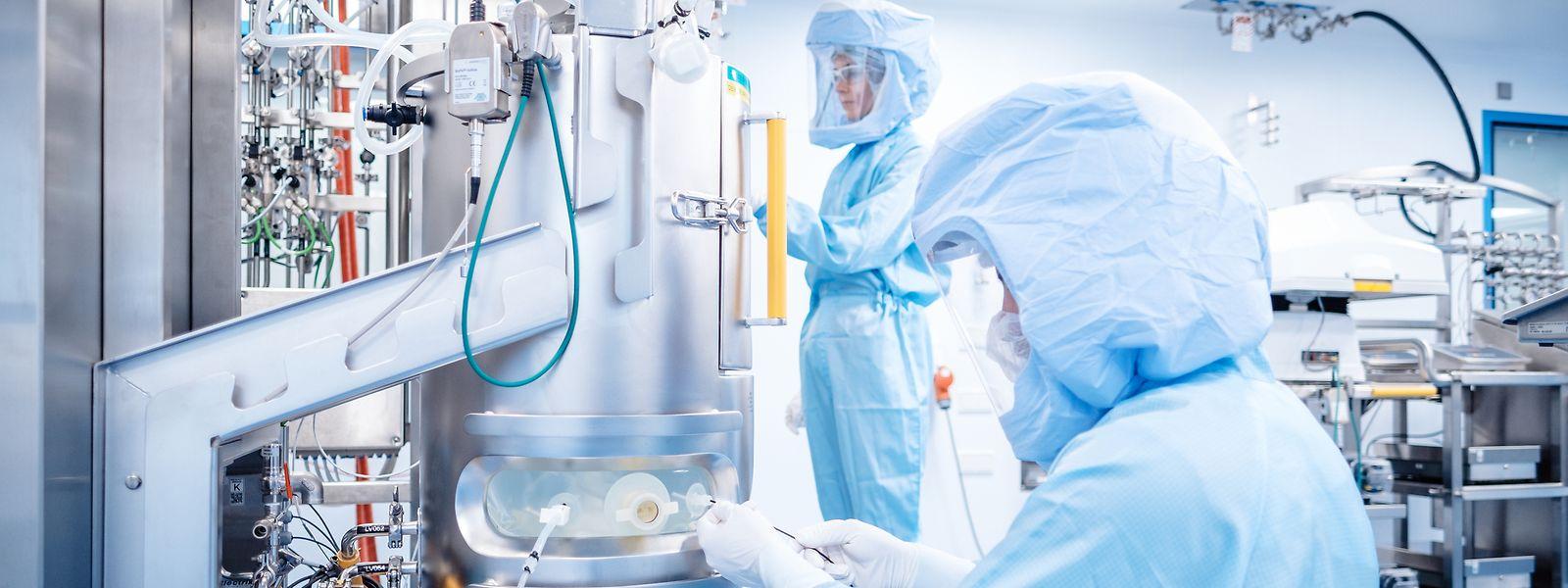 Arbeiter in der Impfstoffproduktionsanlage von Biontech in Marburg. Das Mainzer Unternehmen Biontech hat in seinem neuen Werk im hessischen Marburg mit der Produktion des Botenstoffs mRNA für den Corona-Impfstoff begonnen.