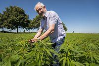 Lokales, Cannad'Our, einziger Lieferant von Cannabis in Luxemburg, Norbert Eilenbecker, Foto: Lex Kleren/Luxemburger Wort