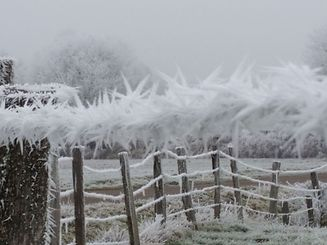 The whole of the country will see temperatures dropping below -10 during the night.