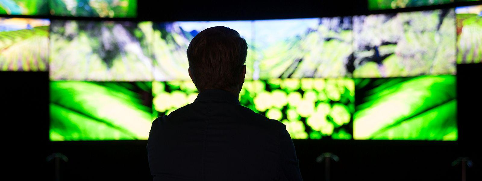 Displays mit OLED-Technologie spielen in dämmeriger Umgebung ihre Stärken aus - und bieten einen enorm großen Blickwinkel.