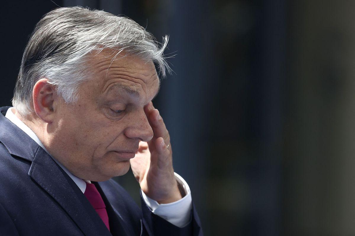 Viktor Orban am Dienstag beim Nato-Gipfel in Brüssel.