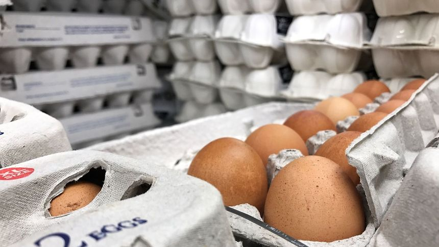 Delhaize a retiré des œufs de la vente.
