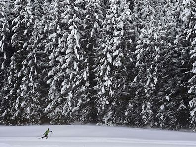 A cross-country-skier makes his way through the snowy landscape near the small Bavarian village of Kaltenbrunn near Garmisch-Partenkirchen, southern Germany, during nice winter weather with temperatures by minus four degrees Celsius on January 9, 2017. / AFP PHOTO / Christof STACHE