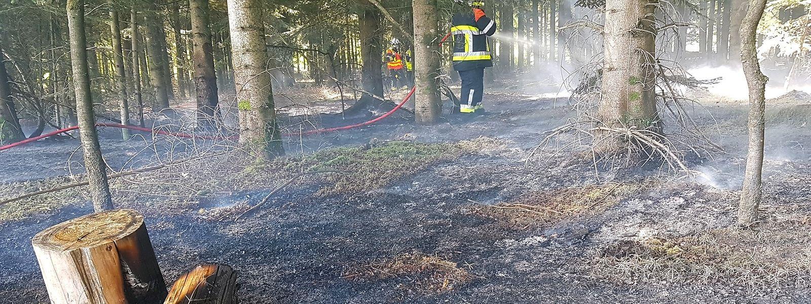 Bereits am Dienstag hatte es in einem Waldstück in Brouch gebrannt.