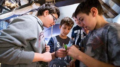 Atelier para crianças e jovens no Museu da Natureza no Grund