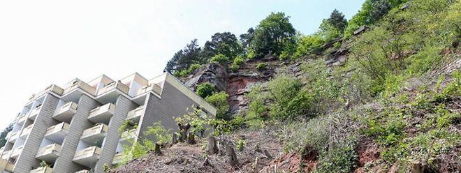 Hinter diesem Mietshaus fanden Waldarbeiter im Mai 2015 das Skelett von Tanja Gräff.