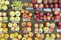 In Luxemburg findet man jede Menge alte Apfelsorten. Bei den Ausschreibungen für die Schulkantinen bleiben sie chancenlos.