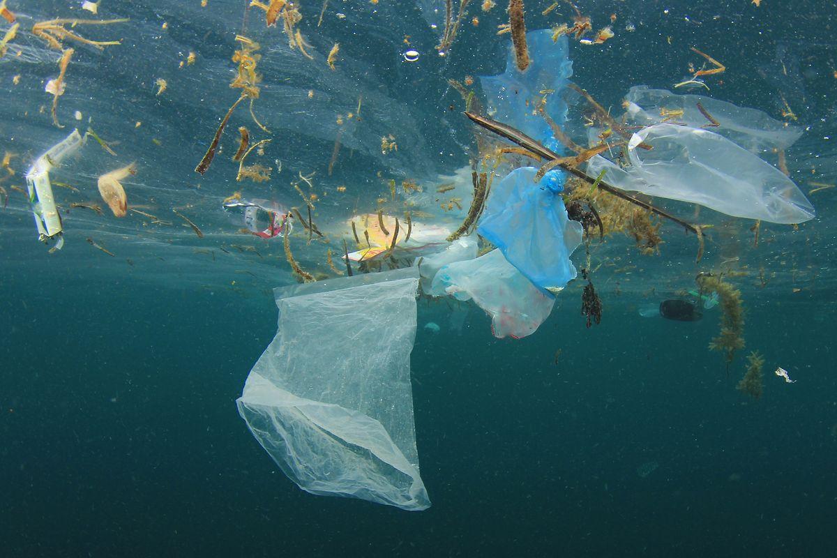 Plastikmüll ist einer der größten Verursacher von Umweltverschmutzung. Die Petenten fordern ein sofortiges Handeln, auch mit Rücksicht auf die kommenden Generationen.