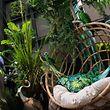 Zum Themendienst-Bericht von Simone Andrea Mayer vom 12.Februar 2018: Ob sich die grünen Oasen auch zu Hause durchsetzen werden? Über und über mit Pflanzen sind manche Ausstellerstände auf der Messe Ambiente zugestellt. Was sie vormachen, wird in derFolge häufig zu Hause nachgeahmt.  (Archivbild vom 10.02.2018/Nur zur redaktionellen Verwendung durch Themendienst-Bezieher.) Foto: Franziska Gabbert/dpa-tmn - Honorarfrei nur für Bezieher des dpa-Themendienstes +++ dpa-Themendienst +++
