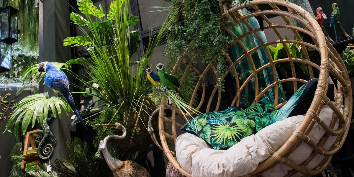 Ob sich die grünen Oasen auch zu Hause durchsetzen werden? Über und über mit Pflanzen sind manche Ausstellerstände auf der Messe Ambiente zugestellt. Was sie vormachen, wird in derFolge häufig zu Hause nachgeahmt.