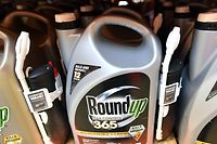 (FILES) In this file photo taken on July 09, 2018, Roundup products are seen for sale at a store in San Rafael, California. - The weedkiller Roundup contributed to a US man's cancer, a California jury found on March 19, 2019, delivering the second major legal defeat to agrochemical giant Monsanto in a year. (Photo by JOSH EDELSON / AFP)