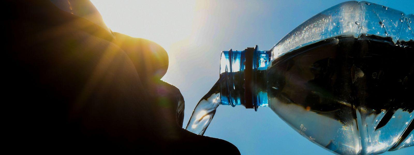 Das Wichtigste bei diesen hohen Temperaturen: Viel trinken.