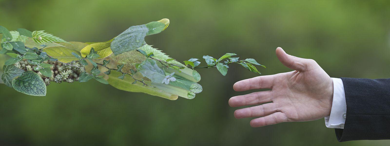 La finance durable peut accompagner la transition de la société vers une économie verte.