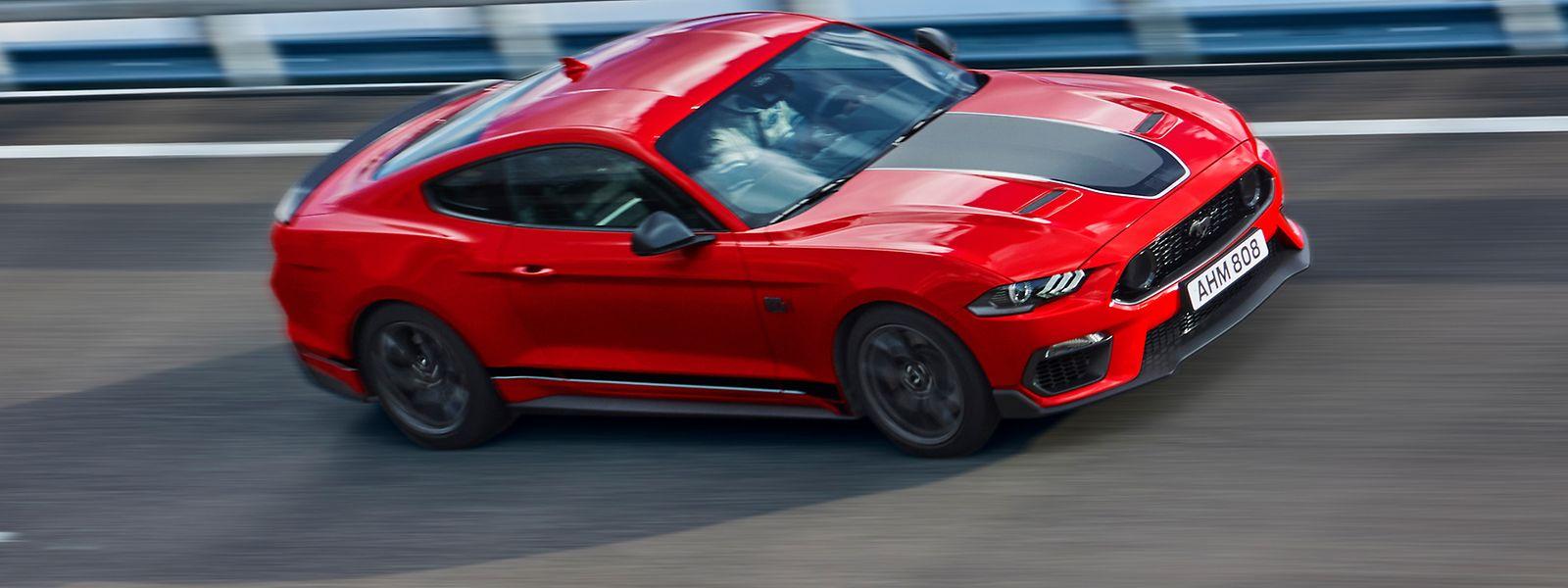 Der Ford Mustang Mach 1 wurde für die Rennstrecke gebaut, ist aber durchaus auch alltagstauglich.