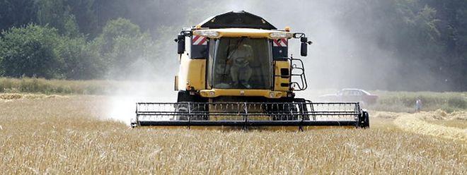 """""""Das fehlende Wissen über moderne Landwirtschaft ist ein großes Problem für die politische Debatte"""", gibt Grünen-Chef Robert Habeck zu bedenken."""