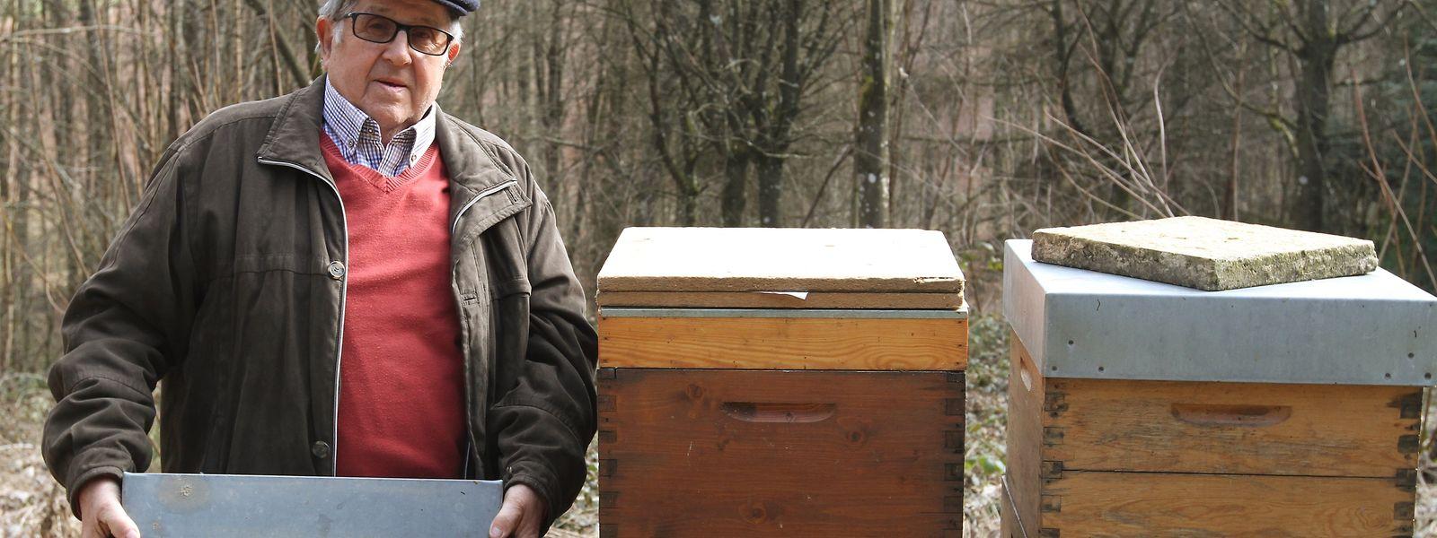 Nach Tausenden Stichen ist der 81-jährige Imker Pierre Meyer immun gegen das Bienengift.