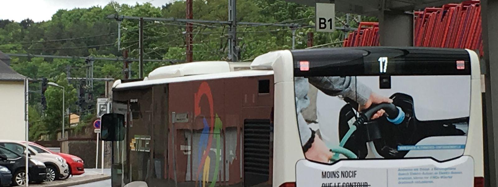 Werbung gegen Mitgliedsgemeinden auf Tice-Bussen ist künftig nicht mehr erlaubt. Indes bleibt der Preis der ganzen Kampagne ein Sassenheimer Geheimnis.