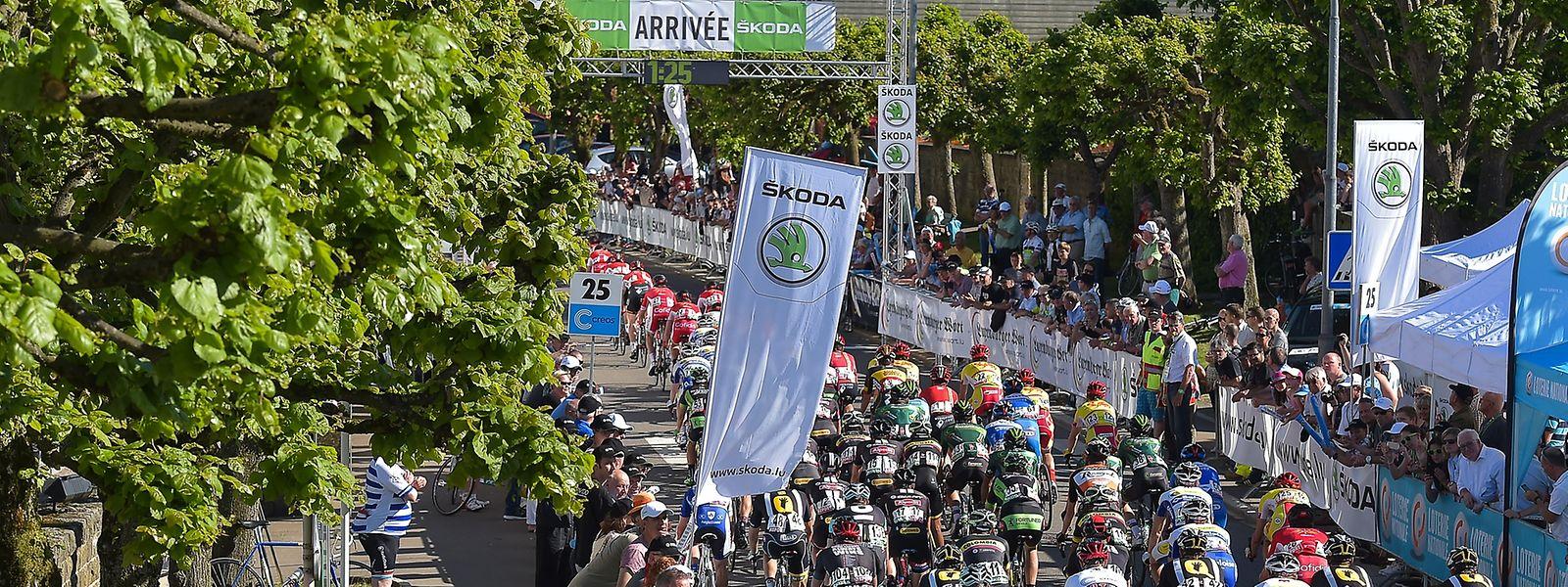 Bei der SkodaTour de Luxembourg werden künftig weniger Fahrer an den Start gehen.