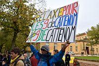 Un cinquantaine de militants sont venus afficher leur soutien aux prévenus, devant le tribunal de Metz.