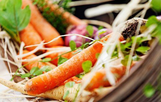 Zur Erneuerung der Hautzellen wird Vitamin A benötigt - es ist unter anderem in Karotten enthalten.