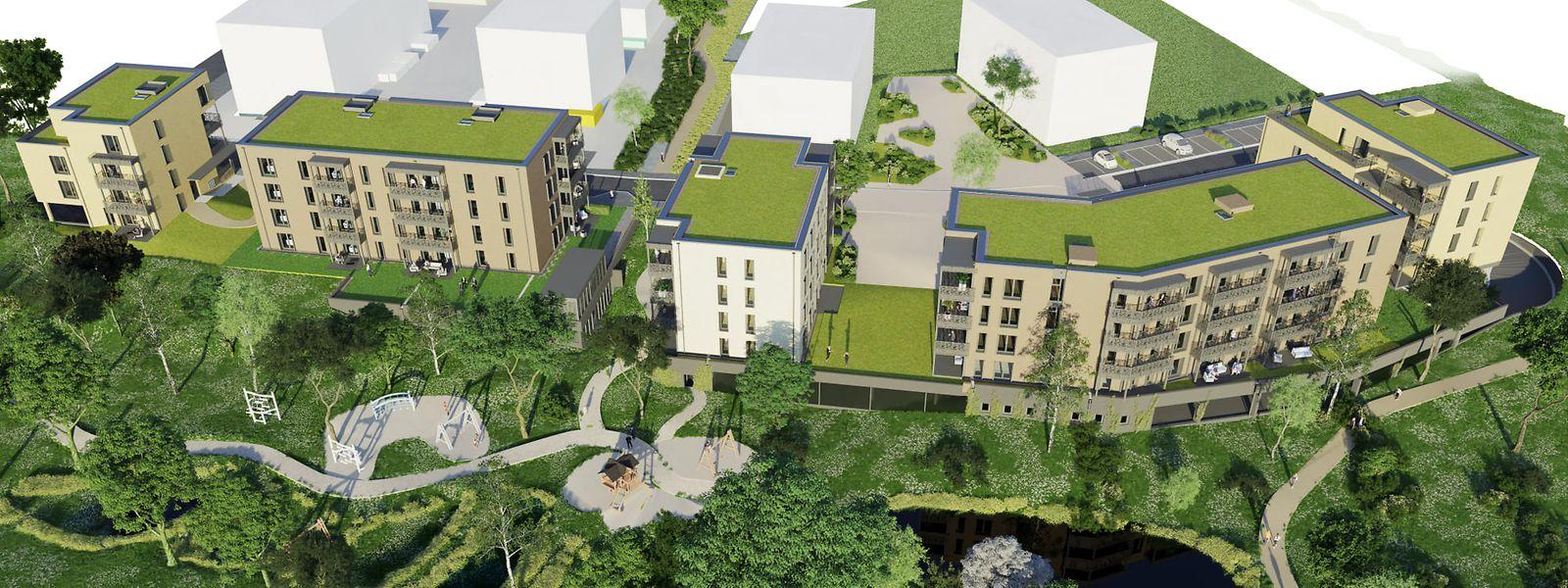 Le projet soutenu à Mamer comptera 20% de maisons individuelles et 80% d'appartements.