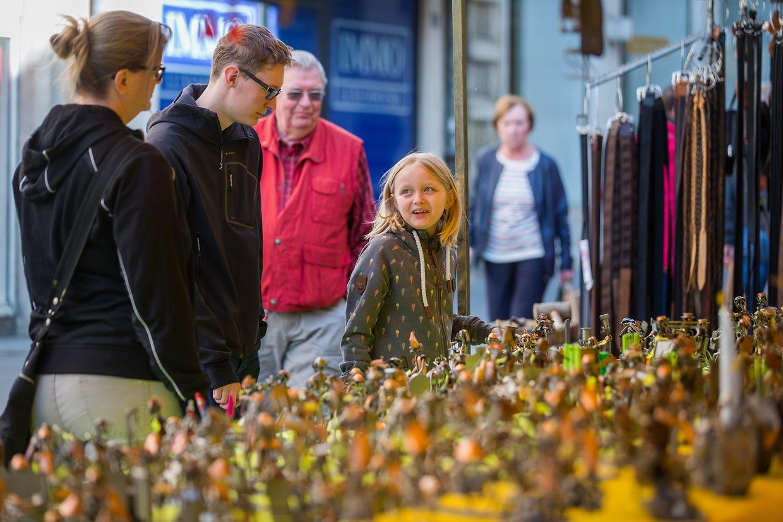 Péckvillercher in allen Farben und Formen begeisterten am Montag Hunderte Émaischen-Besucher in Luxemburg.
