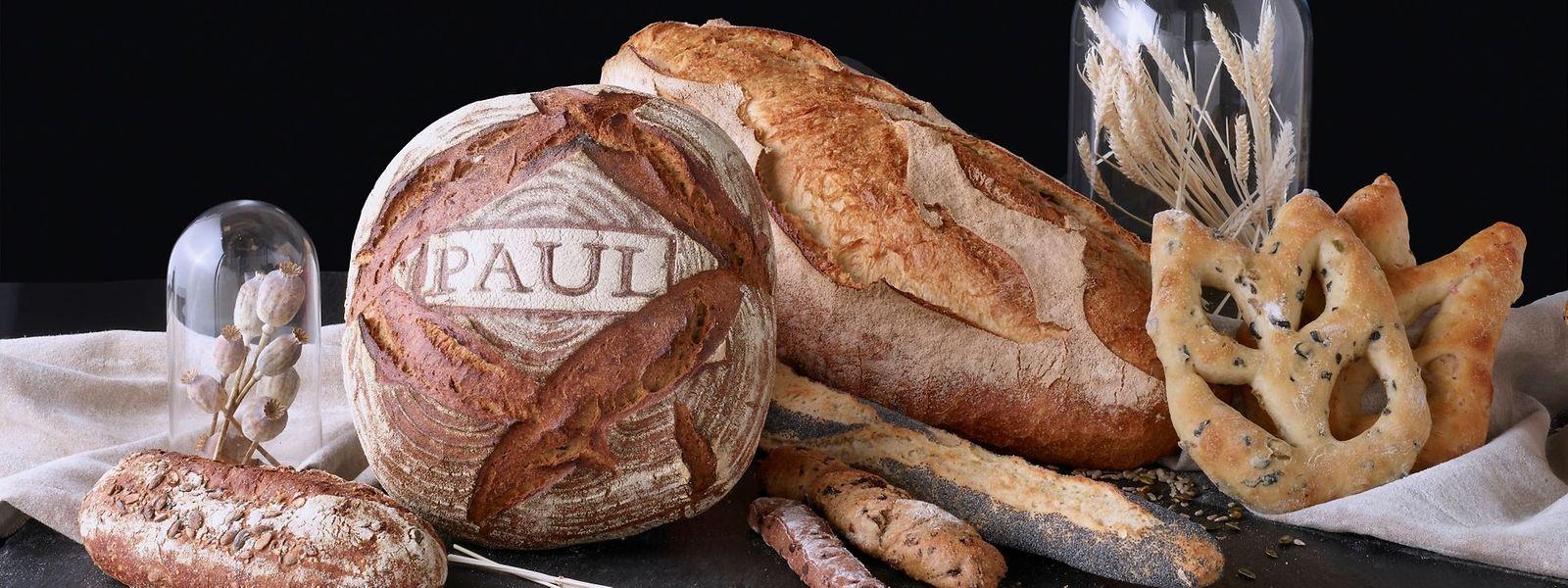 Padaria e pastelaria fresca, produtos de mercearia e refeições preparadas