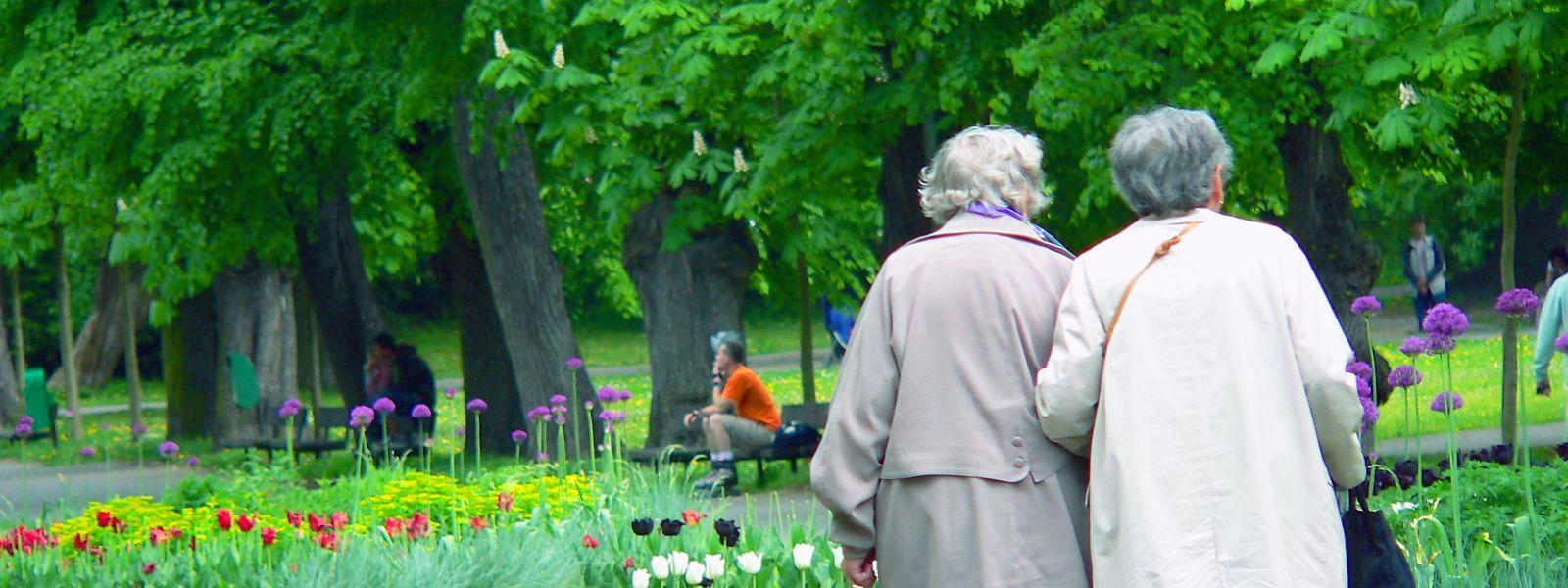 Alter oder auch Altern bedeutet zunächst einmal nichts anderes als das Vergehen von viel Zeit im Leben eines Organismus.