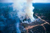 Allein im Juli wurden von INPE-Satelliten mehr als 6.800 Brandherde im Amazonas-Regenwald registriert. Laut Greenpeace waren zuletzt im Jahr 2005 so viele Feuer aktiv.