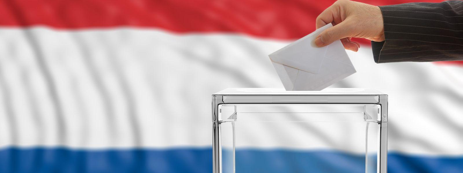 Das Verfassungsreferendum soll frühestens im Jahr 2020 stattfinden.