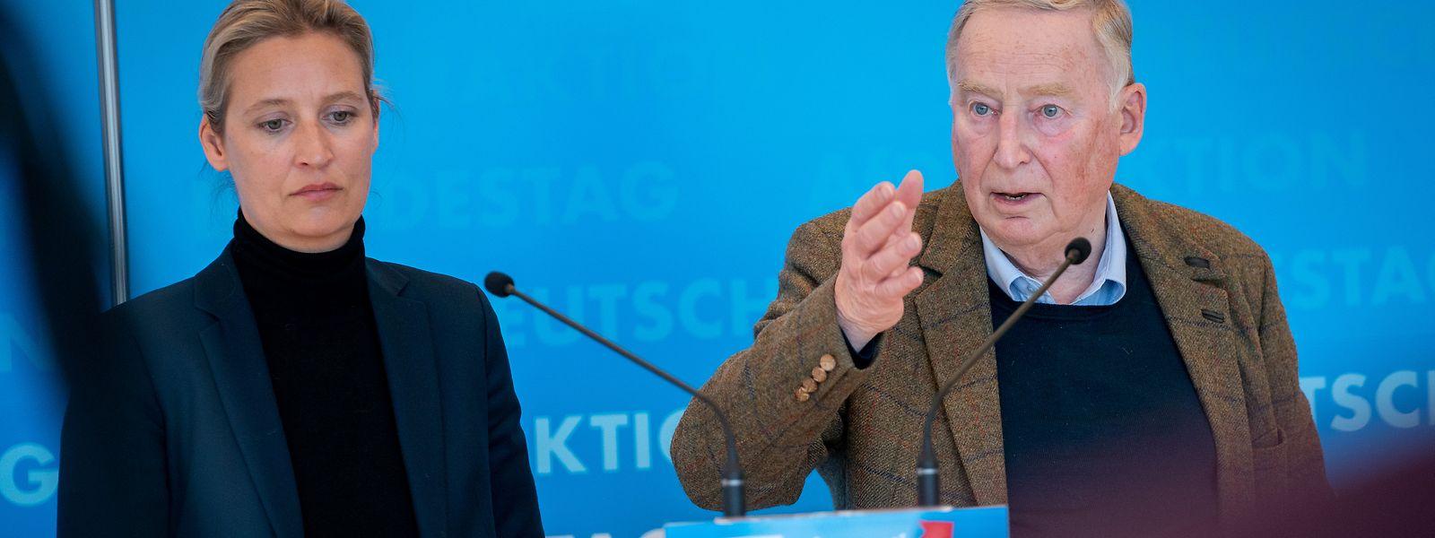 Die Fraktionsvorsitzenden der AfD im Bundestag, Alice Weidel und Alexander Gauland.