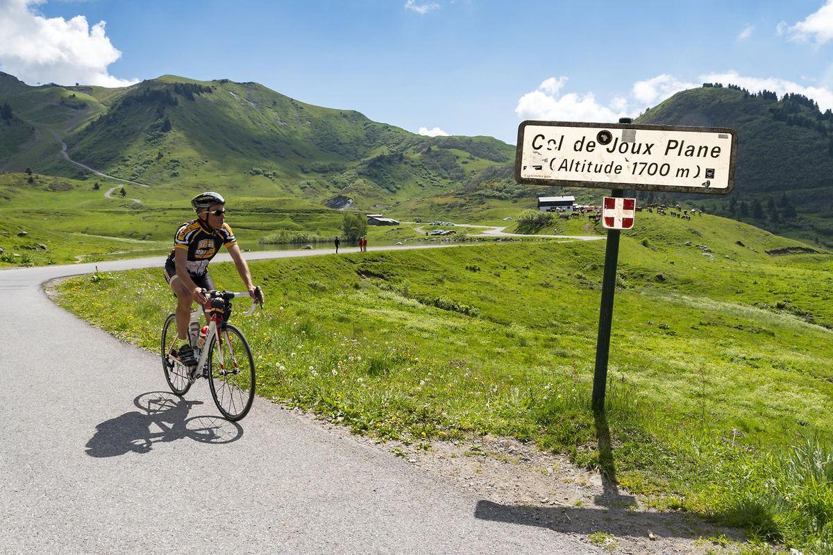Egal ob Rennrad, Mountainbike oder E-Bike – auf zwei Rädernbewegen sich immer mehr Besucher der Region fort.