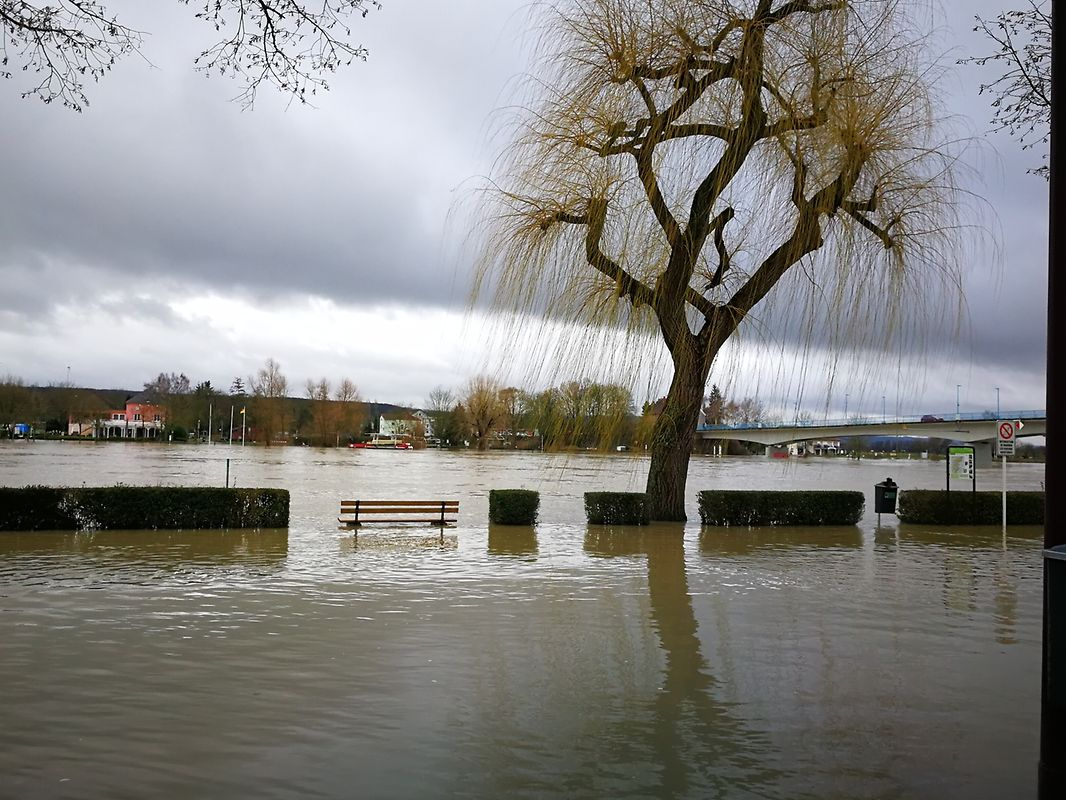 Die Esplanade in Remich ist erneut überschwemmt. Diese Bilder wurden am Mittwoch um 14 Uhr aufgenommen.