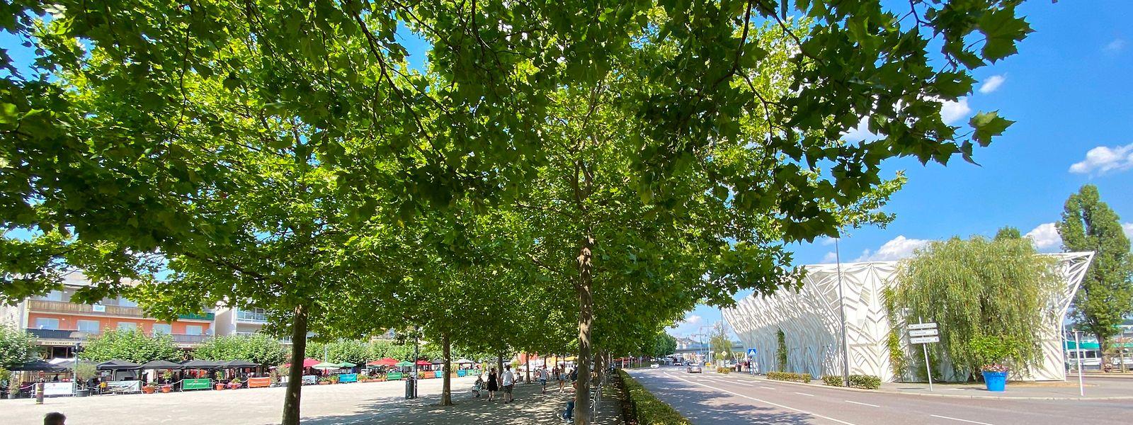 Im Vergleich besteht die Place Kons noch nicht allzu lange. Eröffnet wurde der Platz in Remich 2004.