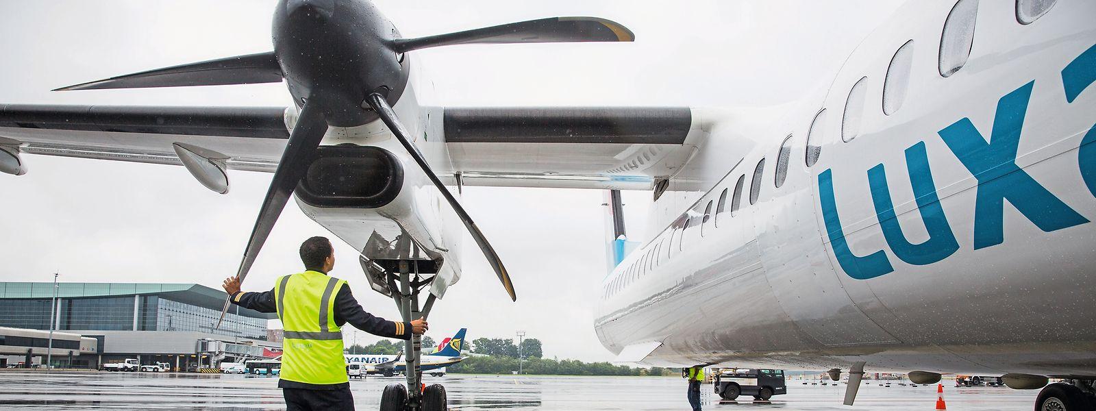 Die nationale Fluggesellschaft kann sich über gute Ergebnisse freuen.