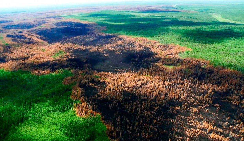 Das Standbild eines Videos zeigt den dramatischen Wald- und Flächenbrand in der Region Krasnojarsk.