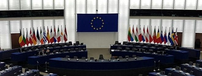 In allen Fraktionen des Europaparlaments findet man junge Politiker, die entscheiden, ihre politische Karriere sofort Europa zu widmen.