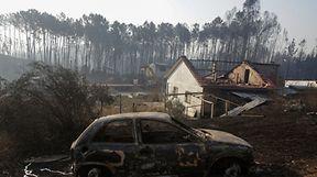 Vão ser disponibilizados entre 300 e 400 milhões de euros para reconstrução e recuperação das zonas afetadas pelos incêndios