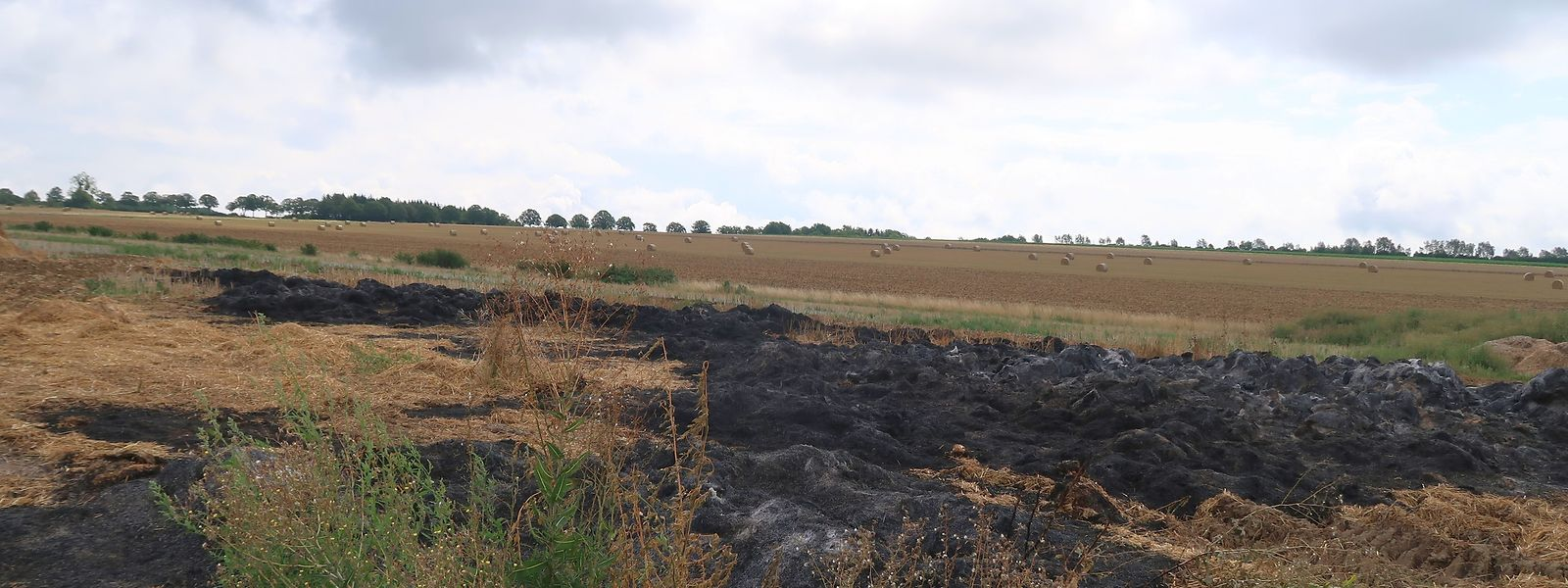 Ein verkohltes Feld und verbrannte Strohreste zeugen gegenwärtig noch von der Feuersbrunst, der allein am vergangenen Sonntag 150 Strohballen in Bürmeringen zum Opfer fielen.