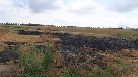 Auf diesem Feld fielen am vergangenen Sonntag 150 Heuballen den Flammen zum Opfer.