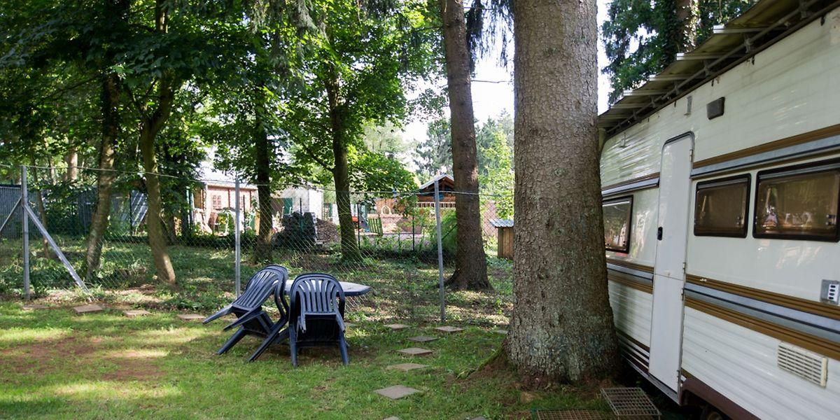 In etwa zwischen dem Campingplatz und dem Tierpark sollen die Baumhäuser errichtet werden.