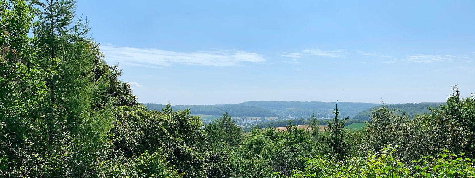 Vom Schifflinger Berg bietet sich ein toller Ausblick über das Kayltal.