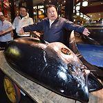 Um atum de 275 quilos foi vendido por 2,7 milhões de euros no Japão