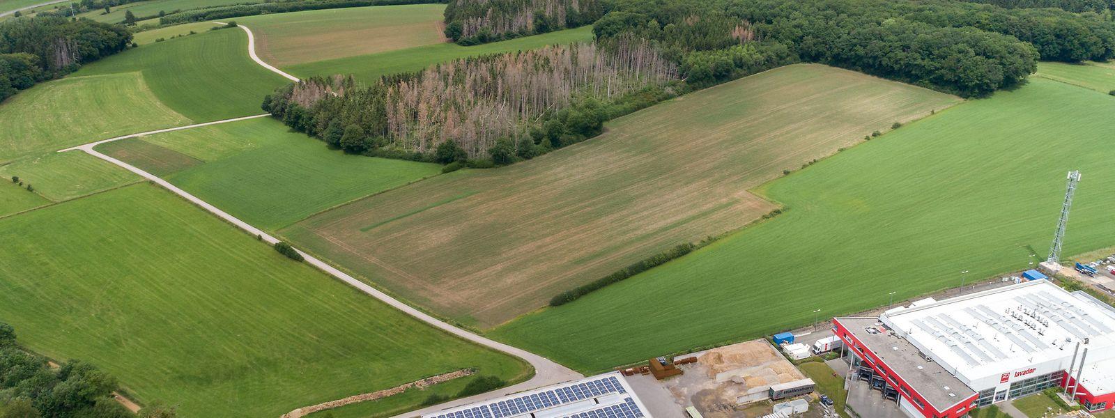 Auf diesem Grundstück will Google ein Datenzentrum bauen.