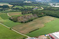 Maximal 30 Prozent der knapp 33 Hektar großen Fläche darf Google bebauen. Die maximale Gebäudehöhe liegt bei 25 Metern.