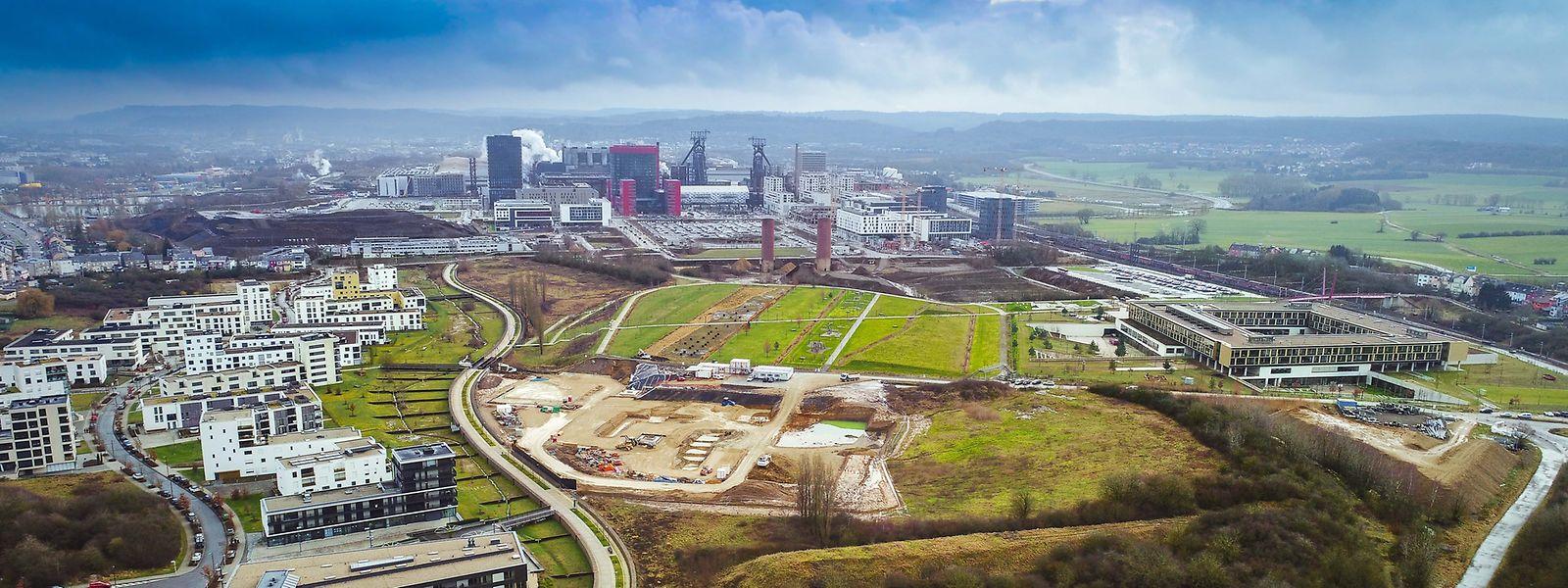 Auf einer Fläche so groß wie 170 Fußballfelder entsteht in Belval ein komplett neues Stadtviertel.