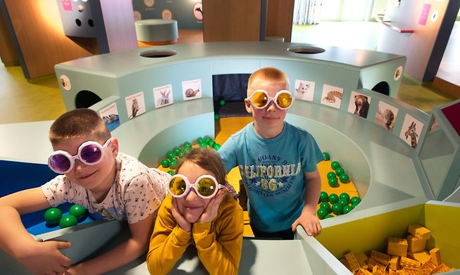 Houtopia has 70 sensory experiences for kids to try out
