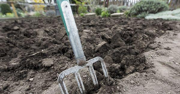 Ernte nach Plan: Tipps für die Gartenplanung