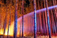 24.08.2018, Brandenburg, Klausdorf: Hell erleuchtet ist ein brennender Wald nahe Klausdorf, der gerade versucht wird, mit einem Wasserstrahl aus einem Fahrzeuges der Feuerwehr zu löschen. Ein Feuer hat sich im Südwesten Brandenburgs auf einer großen Waldfläche ausgebreitet. Rund 300 Einsatzkräfte bekämpfen den Waldbrand südwestlich von Berlin. Die Behörden ließen drei Dörfer räumen. Foto: Patrick Pleul/dpa-Zentralbild/dpa +++ dpa-Bildfunk +++
